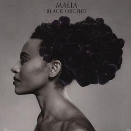 MALIA MALIA - Black Orchid