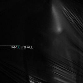 IAMX IAMX - Unfall