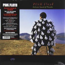 Pink Floyd Pink Floyd - Delicate Sound Of Thunder (2 LP)
