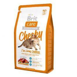 Сухой корм Brit Care Cat Cheeky Outdoor для активных кошек и кошек уличного содержания 7кг