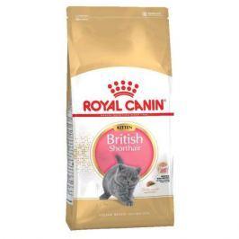 Сухой корм Royal Canin British shorthair для британских котят, 10кг