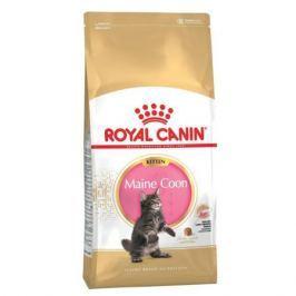 Сухой корм Royal Canin Maine Coon kitten для котят мэйн кунов, 10кг
