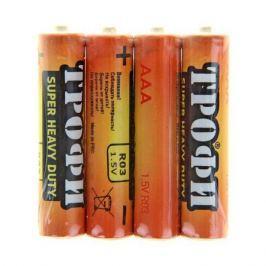 Батарея Трофи R 03