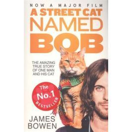 Bowen J. A Street Cat Named Bob: How one man and his cat found hope on the streets