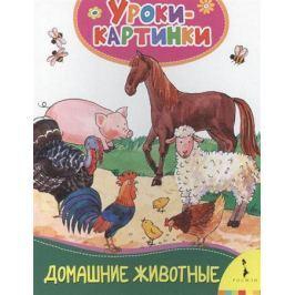 Котятова Н. (ред.) Домашние животные. Уроки-картинки