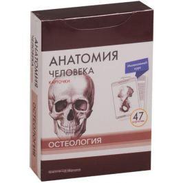 Сапин М., Николенко В., Тимофеева М. Анатомия человека. Карточки. Остеология. Интенсивный курс (47 карточек)