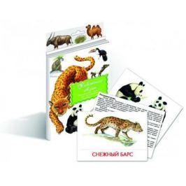 Животные Азии Дидакт. карточки
