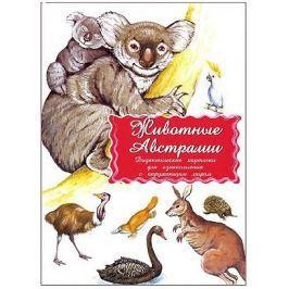 Животные Австралии Дидактические карточки для ознакомления с окружающим миром