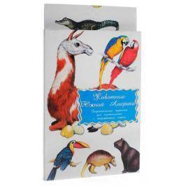 Животные Южной Америки Дидакт. карточки