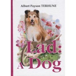 Terhune A. Lad: A Dog