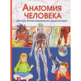 Гуиди В. Анатомия человека