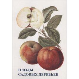 Плоды садовых деревьев. Набор открыток
