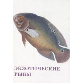 Экзотические рыбы. Набор открыток