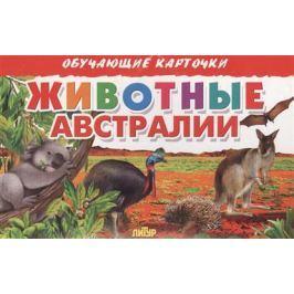 Глушкова Н. (худ.) Обучающие карточки. Животные Австралии