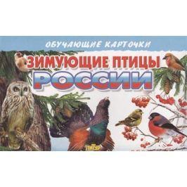 Глушкова Н. (худ.) Обучающие карточки. Зимующие птицы России