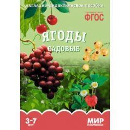 Минишева Т. Ягоды садовые. Наглядно-дидактическое пособие
