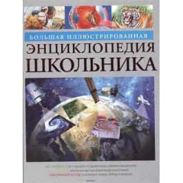 Большая илл. энциклопедия школьника