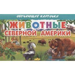 Глушкова Н. (худ.) Обучающие карточки. Животные Северной Америки