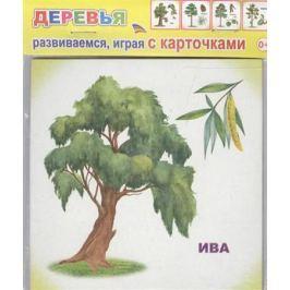 Обучающие карточки. Деревья