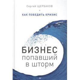 Щербаков С. Бизнес, попавший в шторм. Как победить кризис