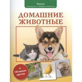 Волцит П. Домашние животные