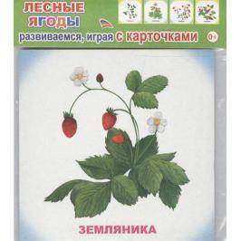 Обучающие карточки. Лесные ягоды