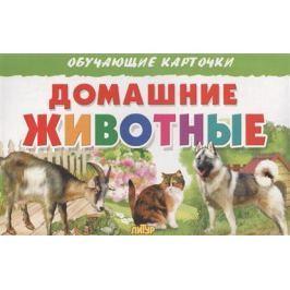 Глушкова Н. (худ.) Обучающие карточки. Домашние животные