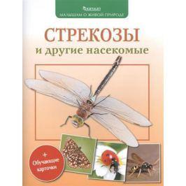 Волцит П. Стрекозы и другие насекомые