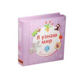 Гагарина М. (ред.) Я узнаю мир. 9 книжек-кубиков