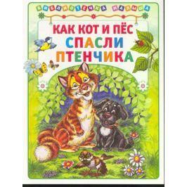 Деревянко Т. (ред.) Как кот и пес спасли птенчика