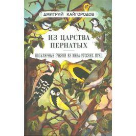 Кайгородов Д. Из царства пернатых. Популярные очерки из мира русских птиц