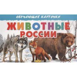 Богуславская М. (худ.) Обучающие карточки. Животные России