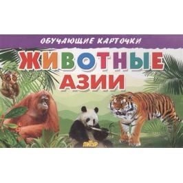 Глушкова Н. (худ.) Обучающие карточки. Животные Азии