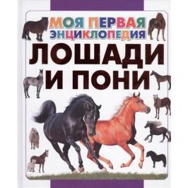 Спектор А. Лошади и пони