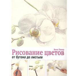 Пипер А. Рисование цветов от бутона до листьев