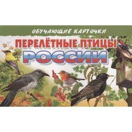 Глушкова Н. (худ.) Обучающие карточки. Перелетные птицы России