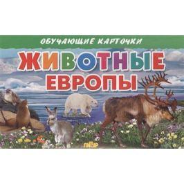 Глушкова Н. (худ.) Обучающие карточки. Животные Европы