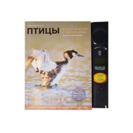 Митителло К. Птицы. Водоплавающие и околоводные. Звуковая энциклопедия (+звуковой модуль)
