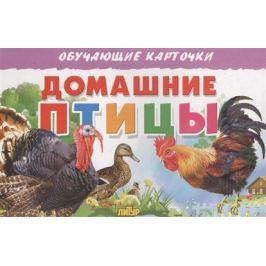 Глушкова Н. (худ.) Обучающие карточки. Домашние птицы