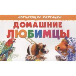 Богуславская М. (худ.) Обучающие карточки. Домашние любимцы