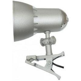 Настольная лампа Трансвит Nadezhda1mini 40Вт серебристый