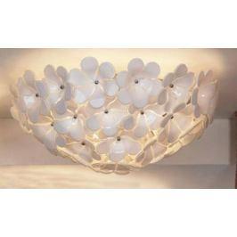 Потолочный светильник Lussole Asinara LSA-5107-05