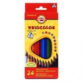 Набор цветных карандашей Koh-i-Noor Triocolor 24 шт 17.5 см 3134/24