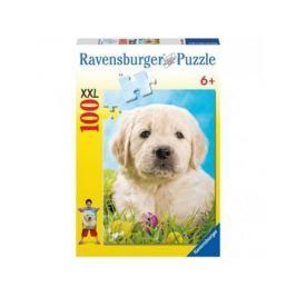 Пазл Ravensburger Милый щенок 100 элементов