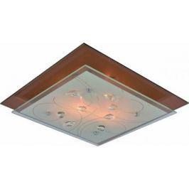 Потолочный светильник Arte Lamp A4042PL-2CC
