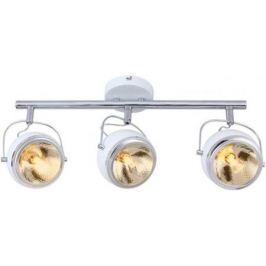 Спот Arte Lamp 98 A4509PL-3WH