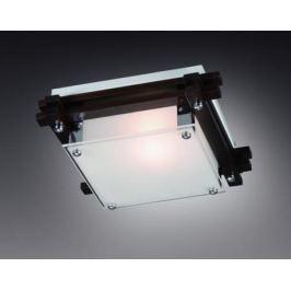 Потолочный светильник Sonex Trial Vengue 1241V