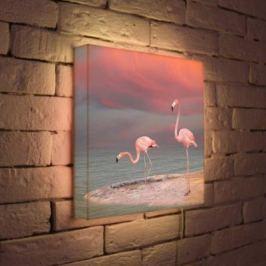 Лайтбокс Фламинго 35x35-022