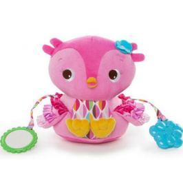 Развивающая игрушка «Совушка» BRIGHT STARTS 52032BS
