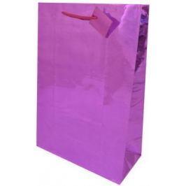 Пакет подарочный Golden Gift BG1375/A 26х32,4х12,7